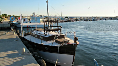 Larnaca Fishing Shelter